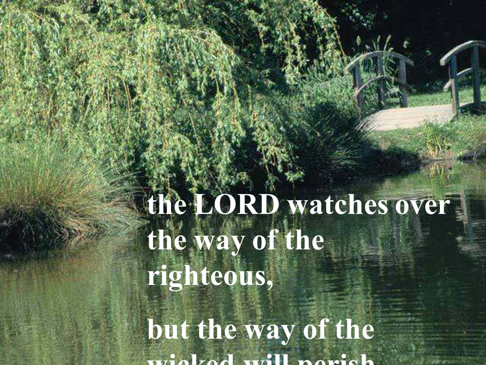 the LORD watches over the way of the righteous, but the way of the wicked will perish.