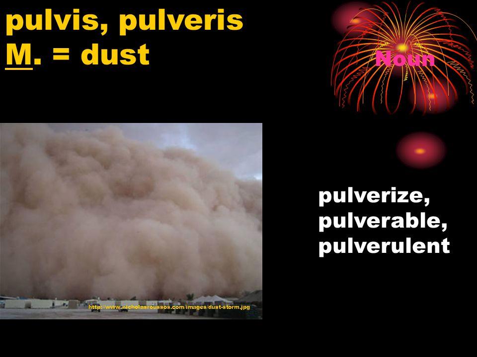 http://www.nicholasroussos.com/images/dust-storm.jpg pulvis, pulveris M.