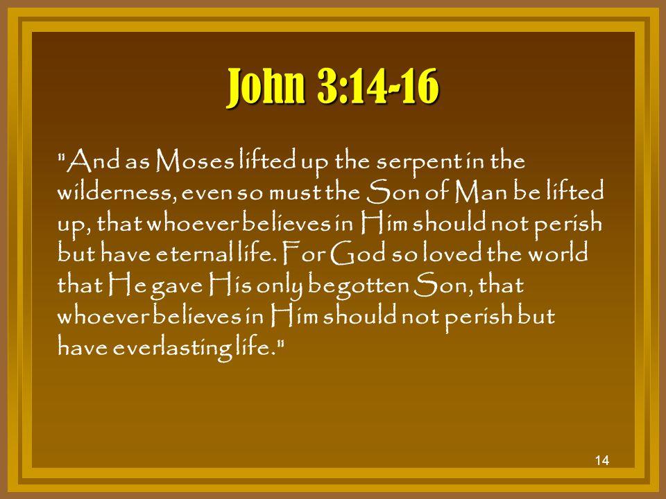 14 John 3:14-16