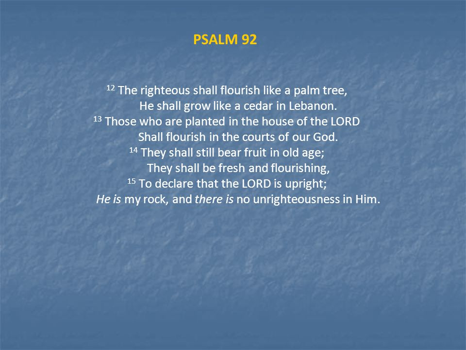 PSALM 92 12 The righteous shall flourish like a palm tree, He shall grow like a cedar in Lebanon.
