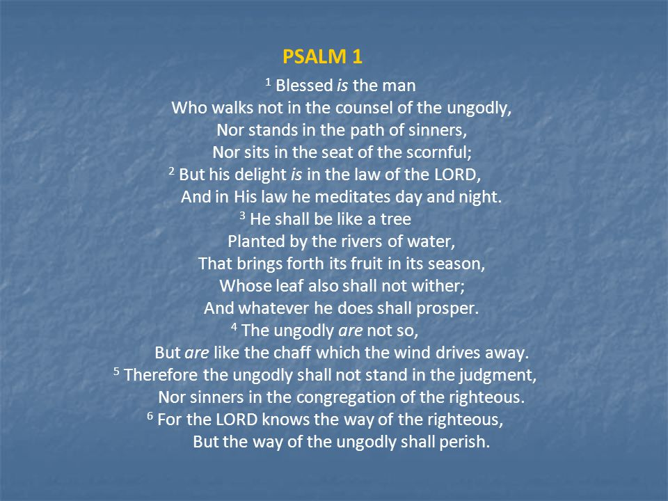 PSALM 1 1 Blessed is the man Who walks not in the counsel of the ungodly, Nor stands in the path of sinners, Nor sits in the seat of the scornful; 2 But his delight is in the law of the LORD, And in His law he meditates day and night.