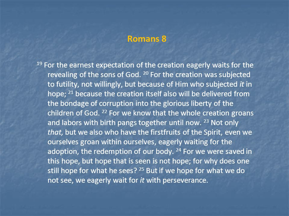 Romans 8 19 For the earnest expectation of the creation eagerly waits for the revealing of the sons of God.