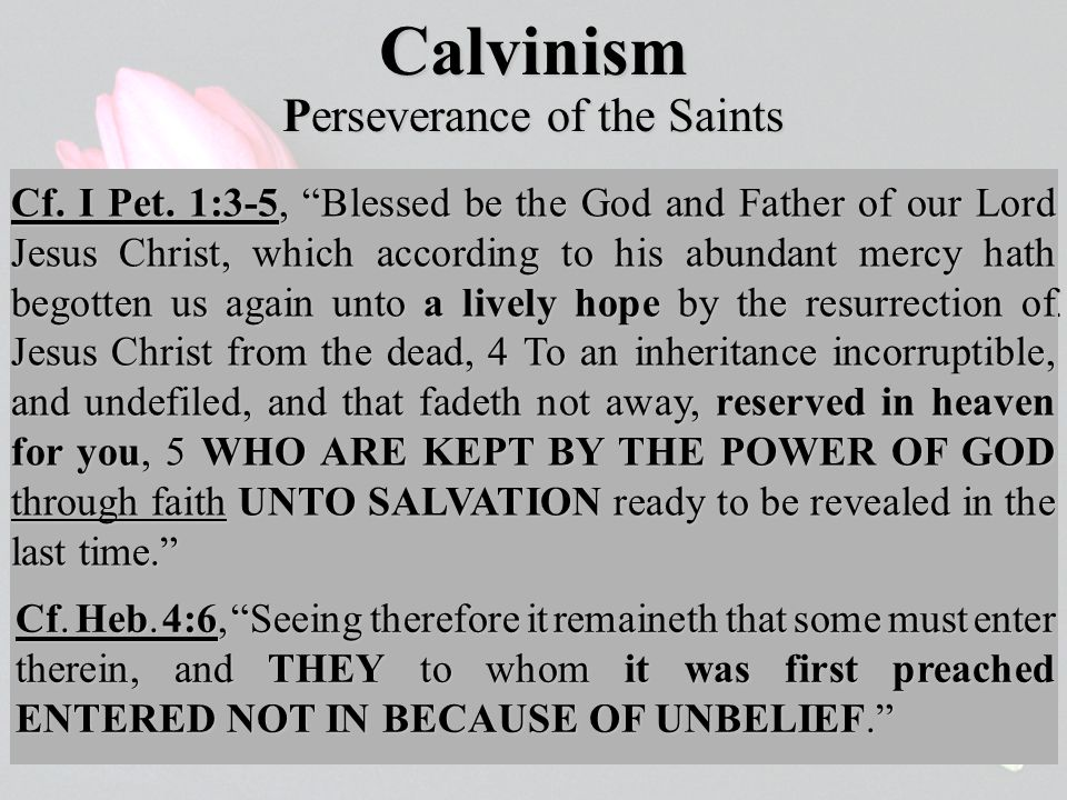 Calvinism The elect are not only redeemed by Christ and renewed by the Spirit; they are also kept in faith by the almighty power of God.