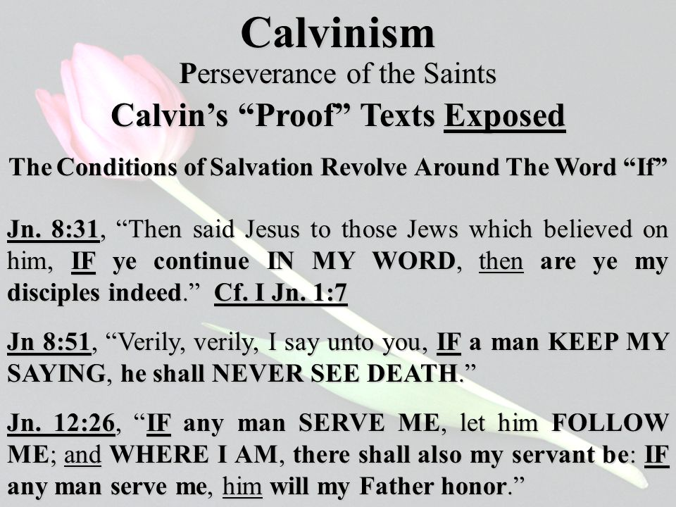 Calvinism The Conditions of Salvation Revolve Around The Word If Calvin's Proof Texts Exposed Perseverance of the Saints Jn.
