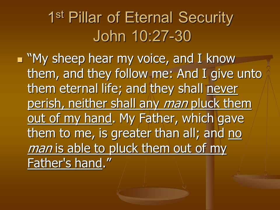 1 st Pillar of Eternal Security John 10:27-30 My sheep hear my voice, and I know them, and they follow me: And I give unto them eternal life; and they shall never perish, neither shall any man pluck them out of my hand.