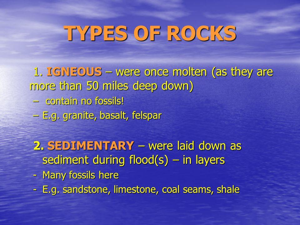 IGNEOUS ROCK – BASALT COLUMNS