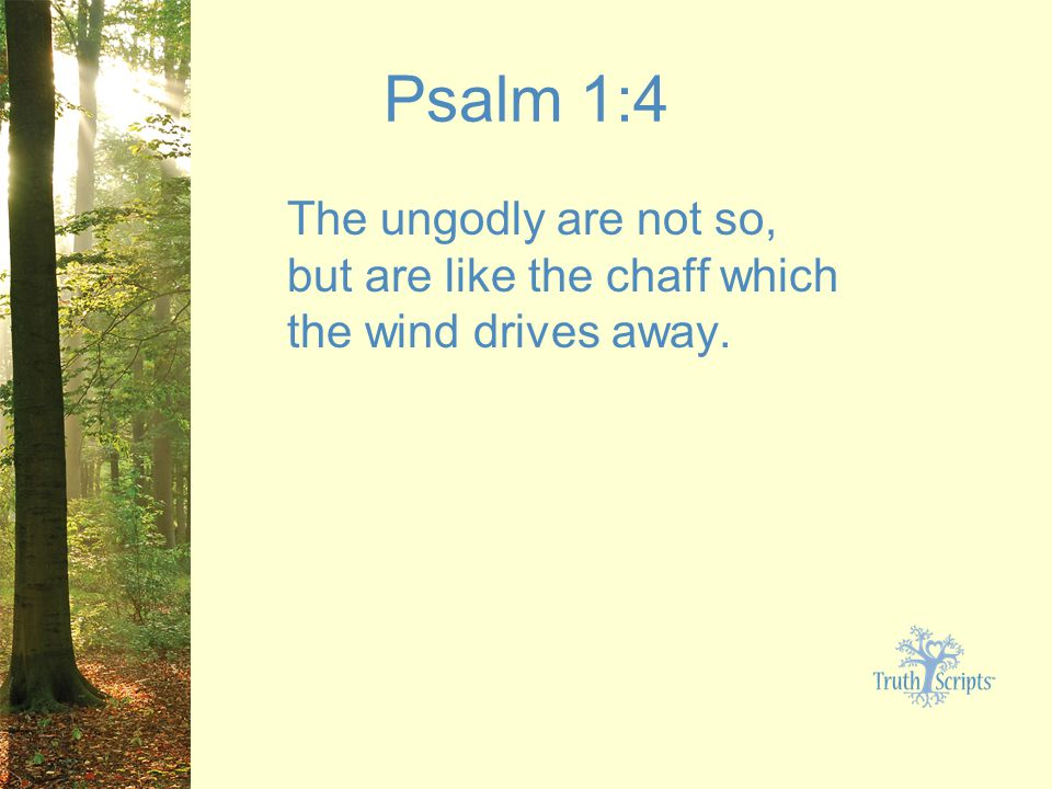 Psalm 1:4 The ungodly are not so, but are like the chaff which the wind drives away.