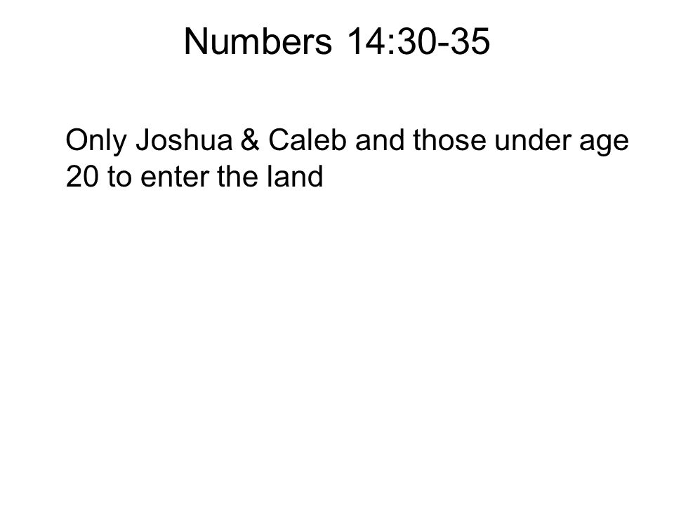 Numbers 14:30-35 Only Joshua & Caleb and those under age 20 to enter the land