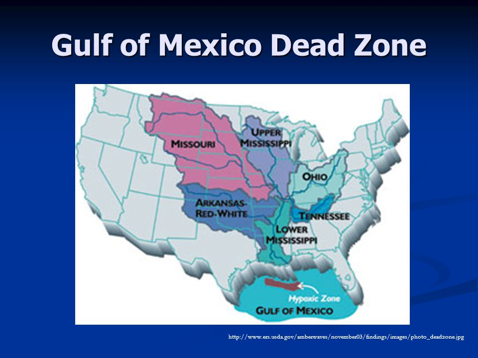 Gulf of Mexico Dead Zone http://www.ers.usda.gov/amberwaves/november03/findings/images/photo_deadzone.jpg