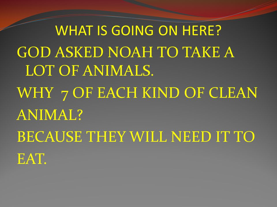 WHAT IS GOING ON HERE. GOD ASKED NOAH TO TAKE A LOT OF ANIMALS.