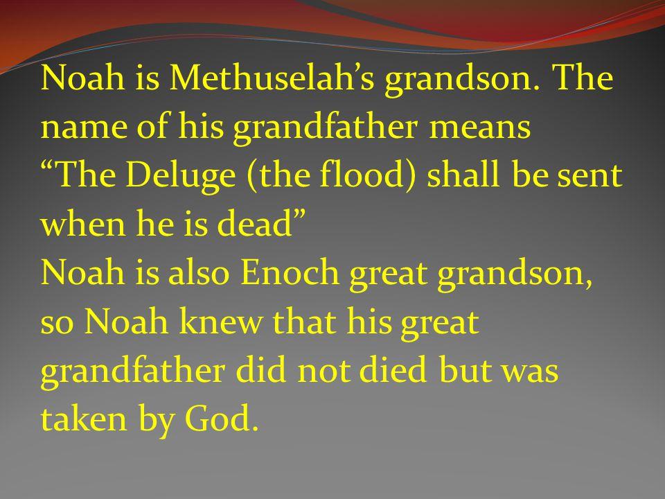 Noah is Methuselah's grandson.
