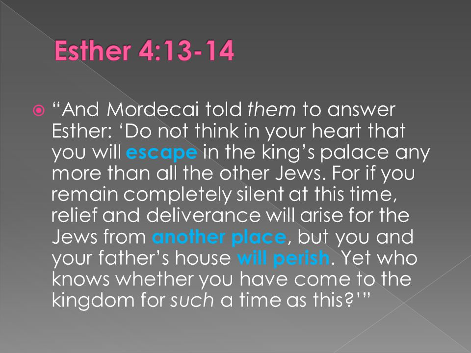 And Mordecai told them to answer Esther: 'Do not think in your heart that you will escape in the king's palace any more than all the other Jews.