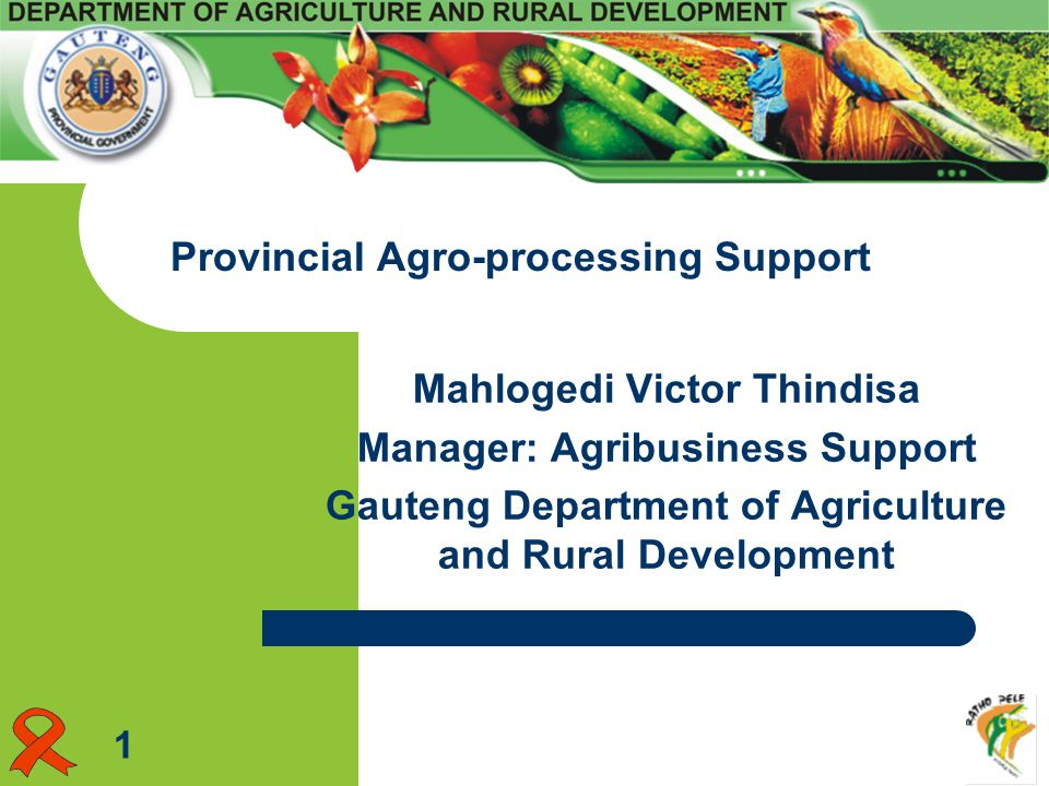 Mahlogedi Victor Thindisa Manager: Agribusiness Support Gauteng Department of Agriculture and Rural Development Provincial Agro-processing Support 1