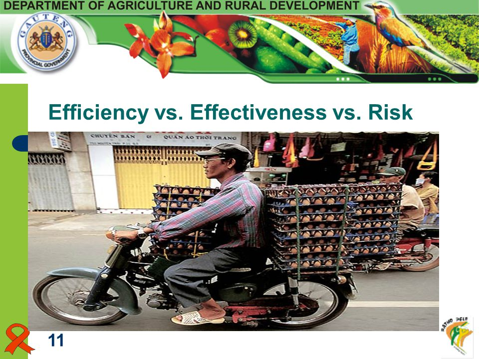 Efficiency vs. Effectiveness vs. Risk 11
