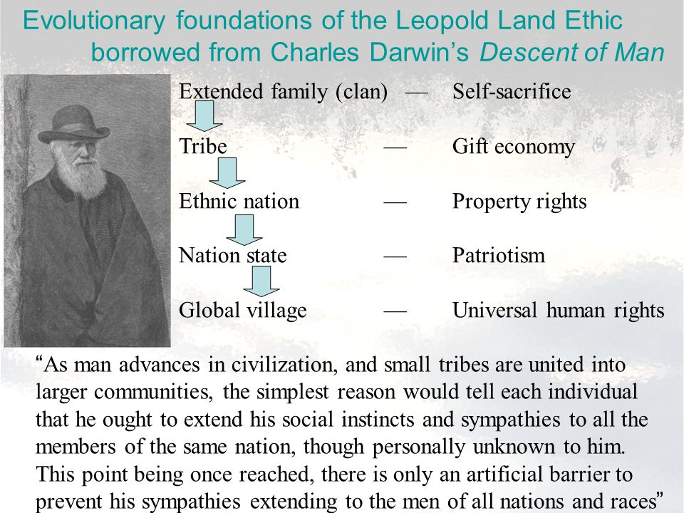 Evolutionary foundations of the Leopold Land Ethic borrowed from Charles Darwin's Descent of Man Extended family (clan) —Self-sacrifice Tribe—Gift economy Ethnic nation—Property rights Nation state—Patriotism Global village—Universal human rights As man advances in civilization, and small tribes are united into larger communities, the simplest reason would tell each individual that he ought to extend his social instincts and sympathies to all the members of the same nation, though personally unknown to him.