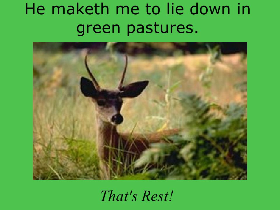 He maketh me to lie down in green pastures. That s Rest!