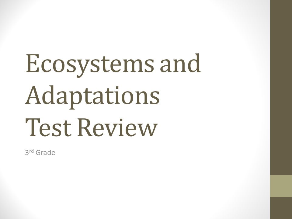 Ecosystems and Adaptations Test Review 3 rd Grade