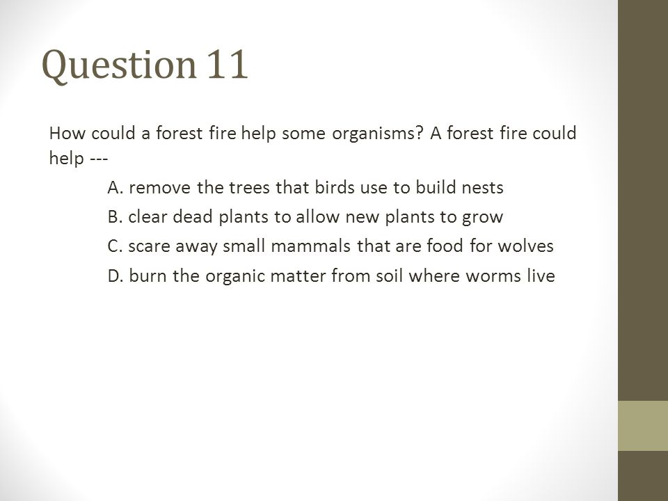 Question 11 How could a forest fire help some organisms? A forest fire could help --- A. remove the trees that birds use to build nests B. clear dead
