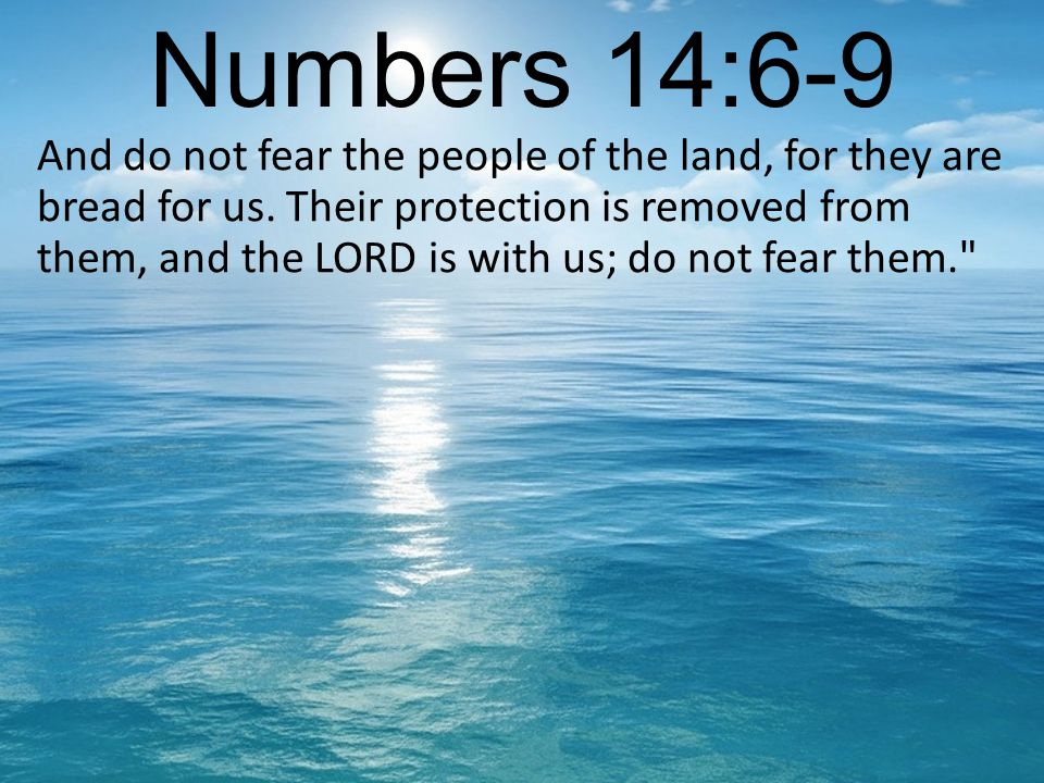 Numbers 14:6-9 And do not fear the people of the land, for they are bread for us.