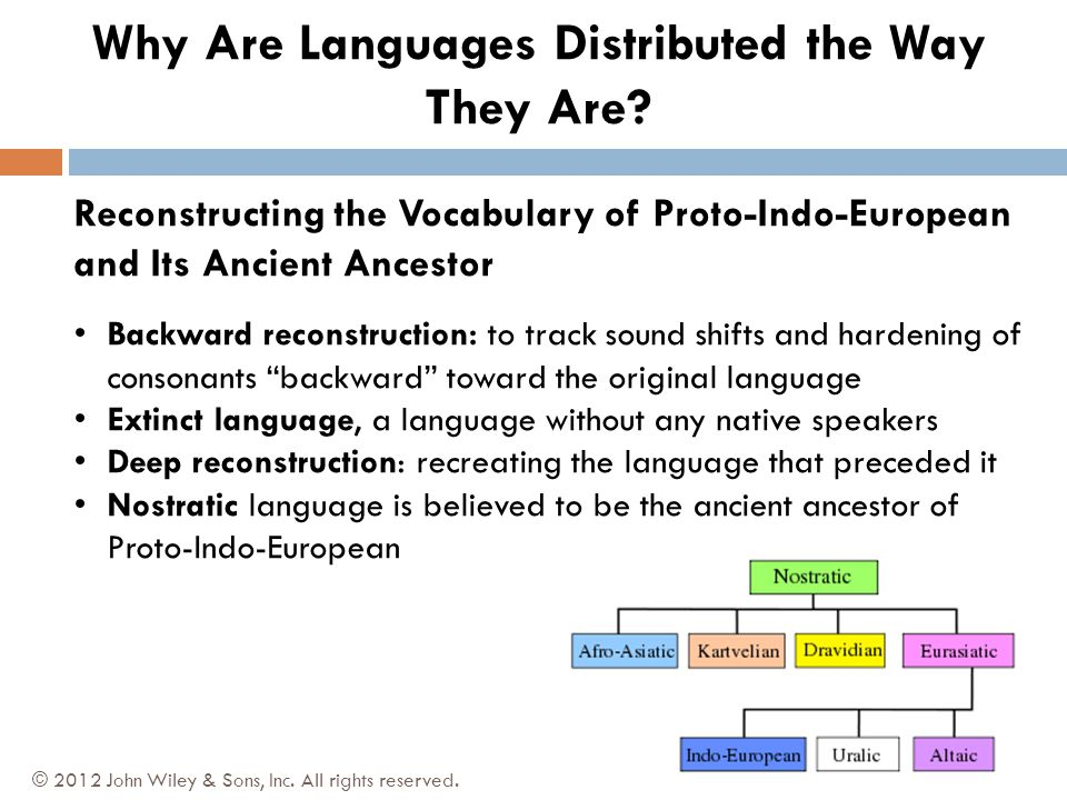 Reconstructing the Vocabulary of Proto-Indo-European and Its Ancient Ancestor Backward reconstruction: to track sound shifts and hardening of consonants backward toward the original language Extinct language, a language without any native speakers Deep reconstruction: recreating the language that preceded it Nostratic language is believed to be the ancient ancestor of Proto-Indo-European © 2012 John Wiley & Sons, Inc.