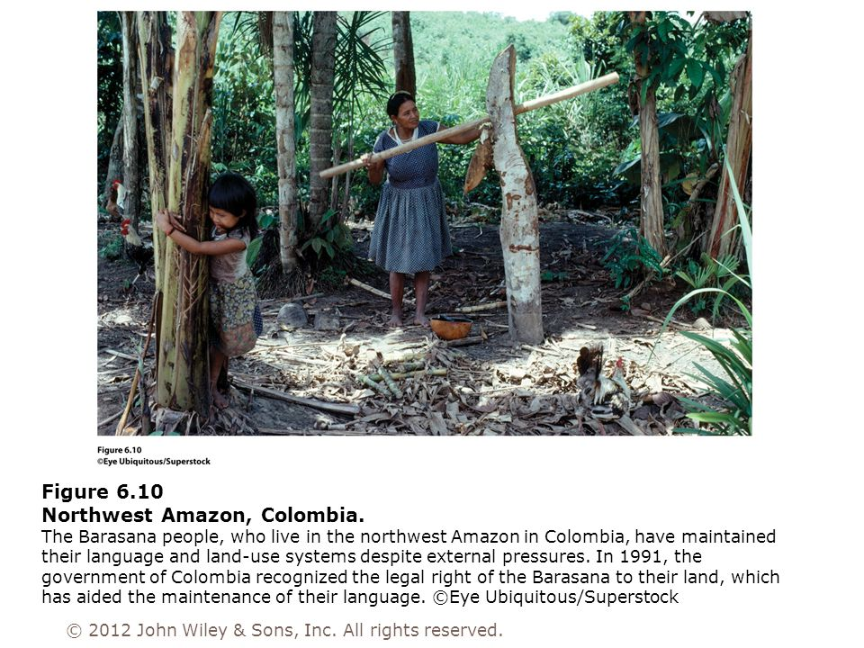 Figure 6.10 Northwest Amazon, Colombia. The Barasana people, who live in the northwest Amazon in Colombia, have maintained their language and land-use