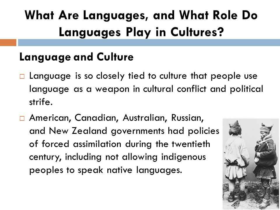  Language is so closely tied to culture that people use language as a weapon in cultural conflict and political strife.  American, Canadian, Austral