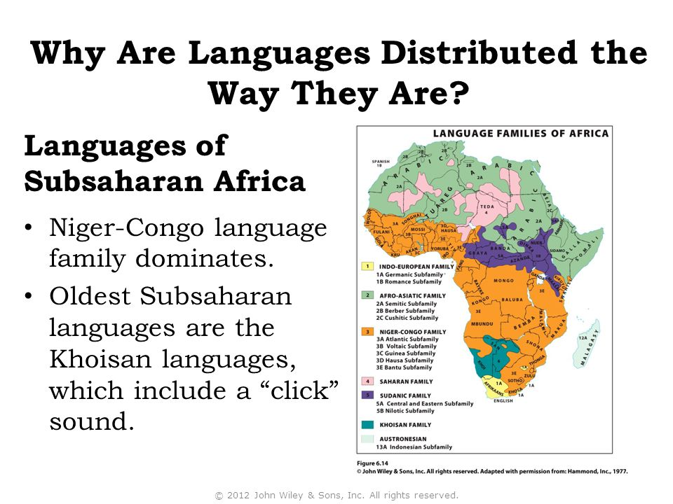 """Niger-Congo language family dominates. Oldest Subsaharan languages are the Khoisan languages, which include a """"click"""" sound. © 2012 John Wiley & Sons,"""