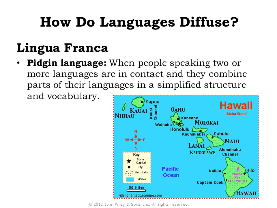 Lingua Franca Pidgin language: When people speaking two or more languages are in contact and they combine parts of their languages in a simplified structure and vocabulary.