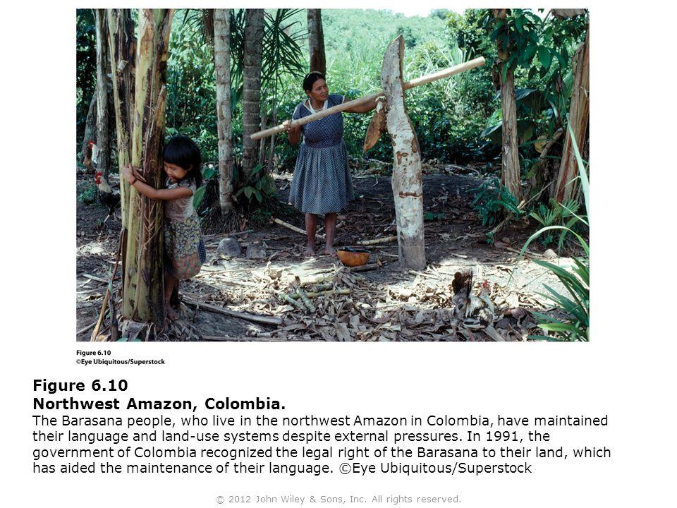 Figure 6.10 Northwest Amazon, Colombia. The Barasana people, who live in the northwest Amazon in Colombia, have maintained their language and land-use