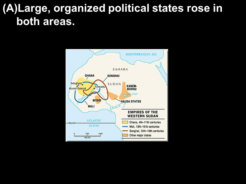 (A)Large, organized political states rose in both areas.