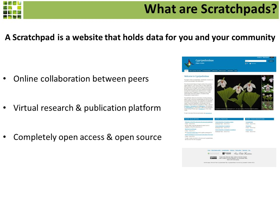 What are Scratchpads.