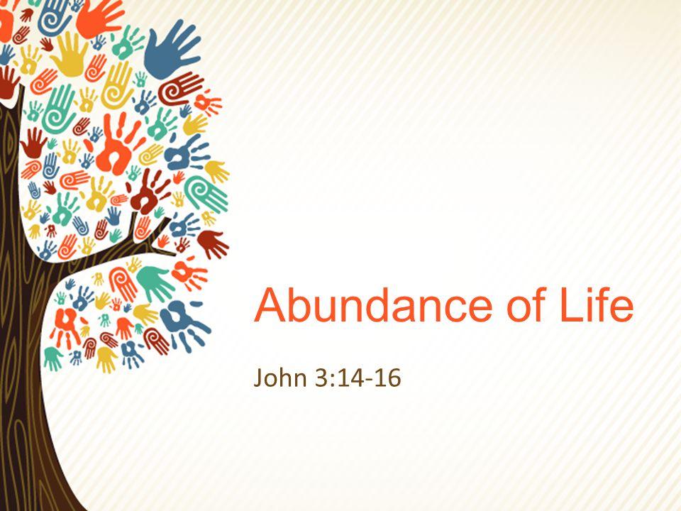 Abundance of Life John 3:14-16