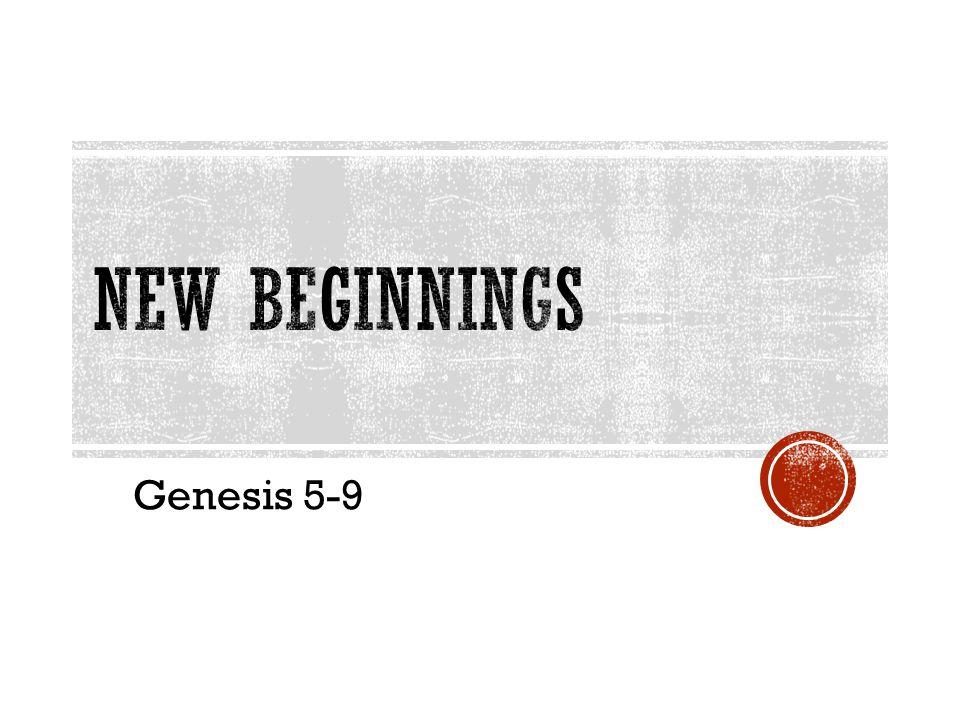 Genesis 5-9