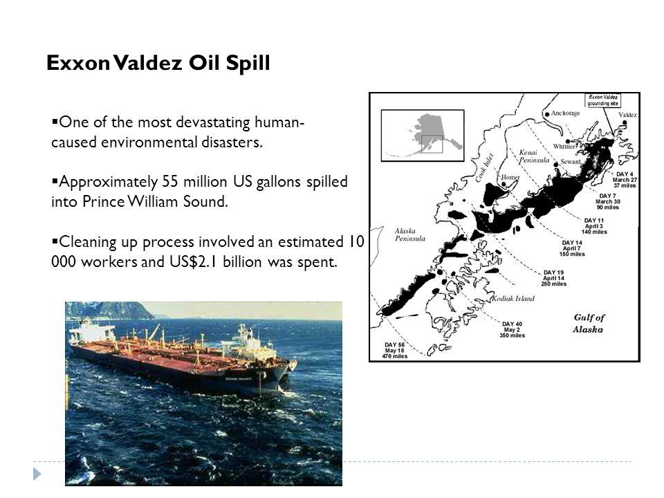 Other examples of large oil spills include: 1)Gulf War Oil Spill- Persian Gulf 2)Deepwater Horizon- US, Gulf of Mexico 3)Ixtoc I Oil Spill- Mexico, Gulf of Mexico 4)Fergana Valley- Uzbekistan 5) ABT Summer- Angola 6) Castillo de Bellver- Africa 7) Amoco Cadiz- France, Brittany