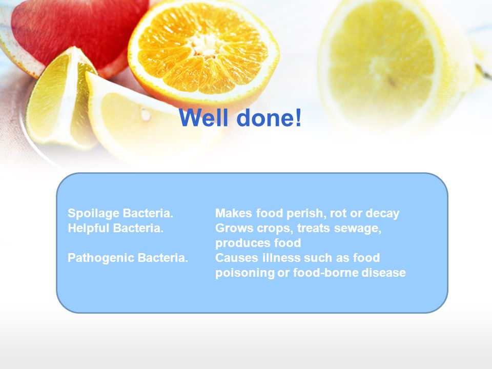 Well done! Spoilage Bacteria. Makes food perish, rot or decay Helpful Bacteria.Grows crops, treats sewage, produces food Pathogenic Bacteria.Causes il