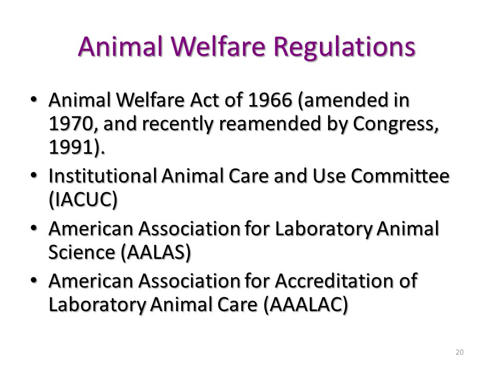 20 Animal Welfare Regulations Animal Welfare Act of 1966 (amended in 1970, and recently reamended by Congress, 1991).
