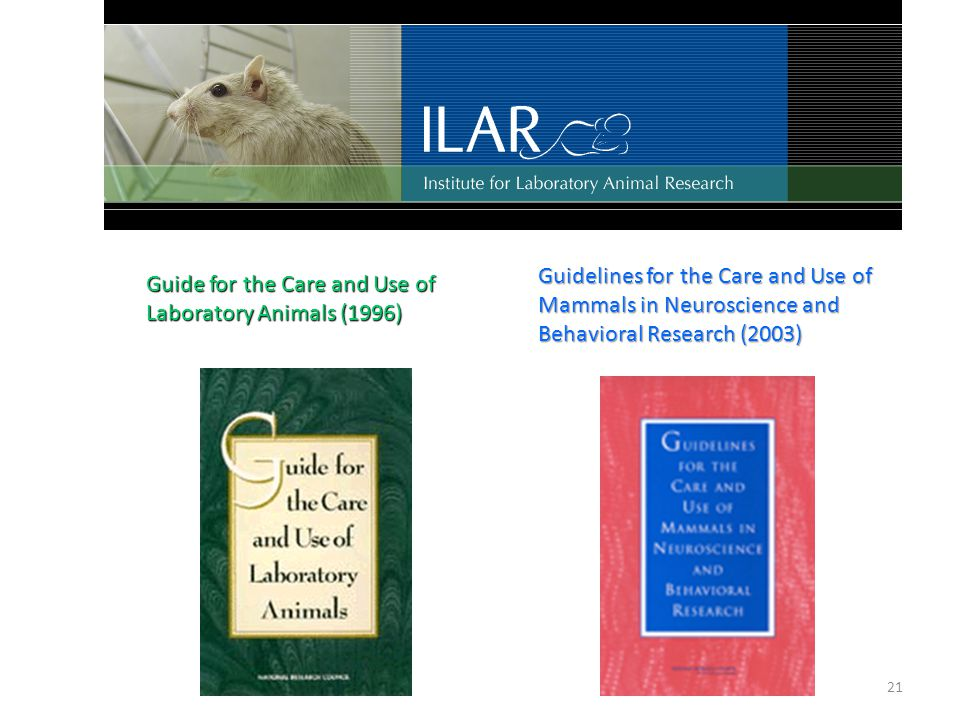21 Guidelines for the Care and Use of Mammals in Neuroscience and Behavioral Research (2003) Guide for the Care and Use of Laboratory Animals (1996)