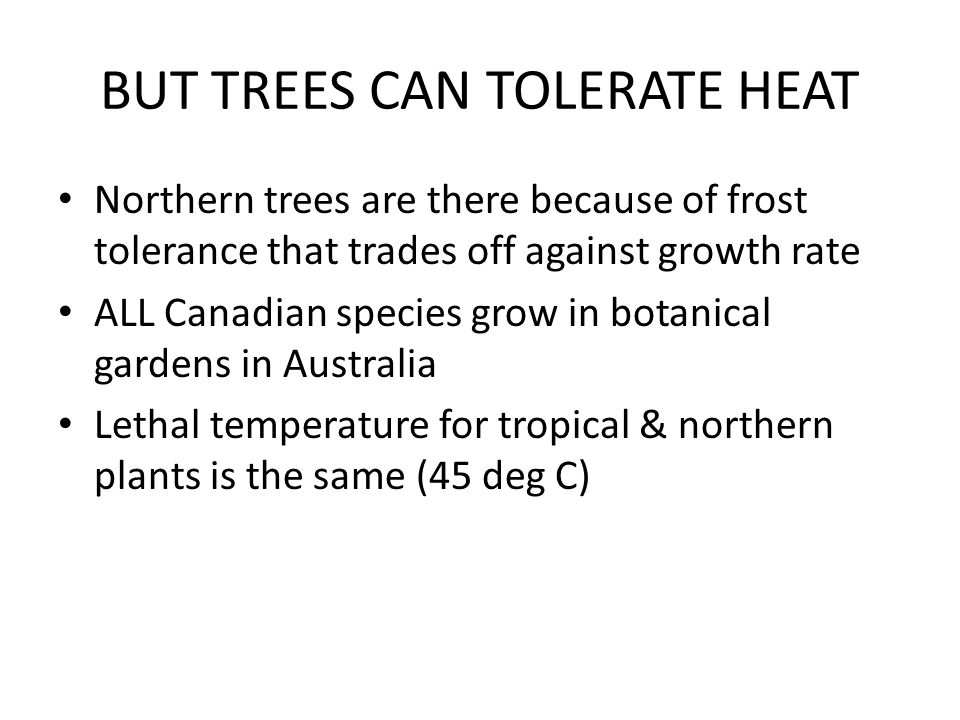 BUT TREES CAN TOLERATE HEAT Northern trees are there because of frost tolerance that trades off against growth rate ALL Canadian species grow in botan