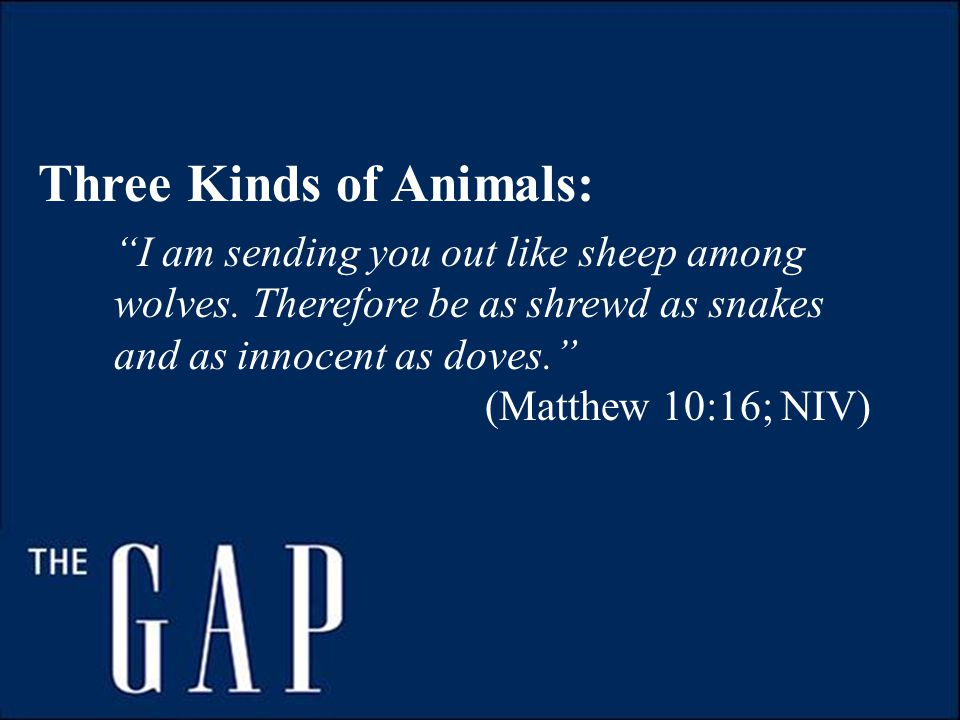 Three Kinds of Animals: I am sending you out like sheep among wolves.