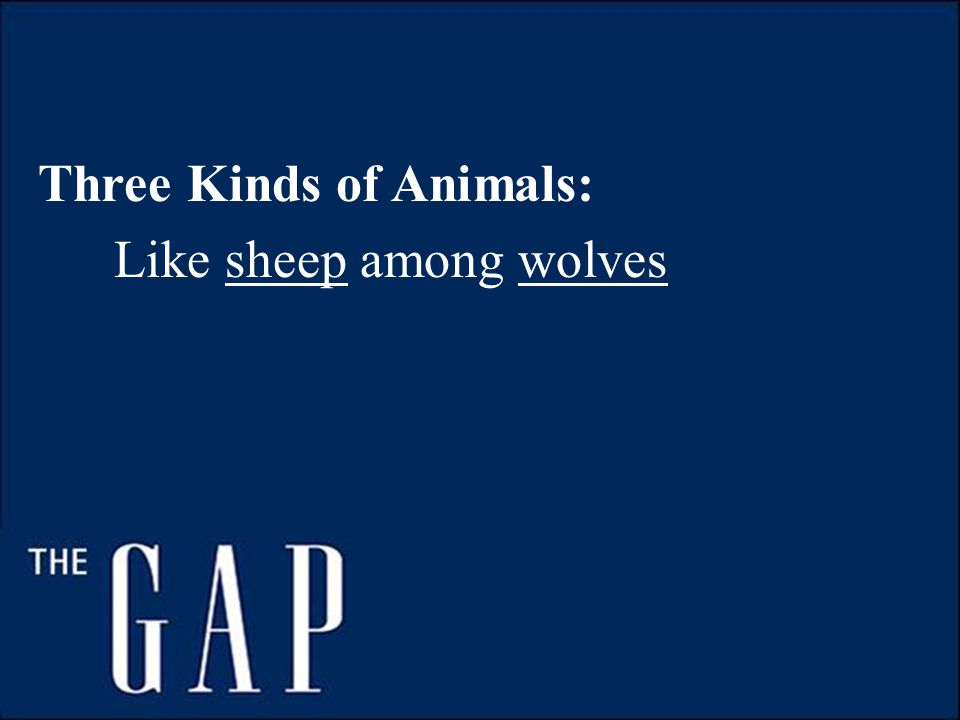 Three Kinds of Animals: Like sheep among wolves