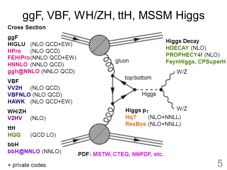 ggF, VBF, WH/ZH, ttH, MSSM Higgs Higgs W/Z top/bottom gluon W/Z Cross Section ggF HIGLU (NLO QCD+EW) HPro (NLO QCD) FEHiPro(NNLO QCD+EW) HNNLO(NNLO QC