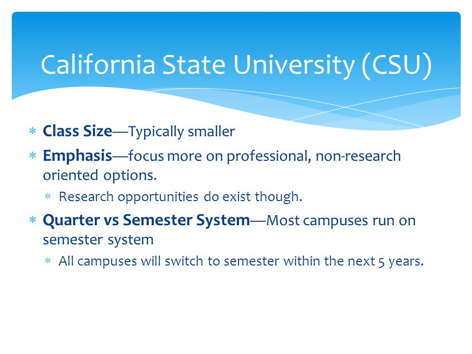  Class Size —Typically smaller  Emphasis —focus more on professional, non-research oriented options.