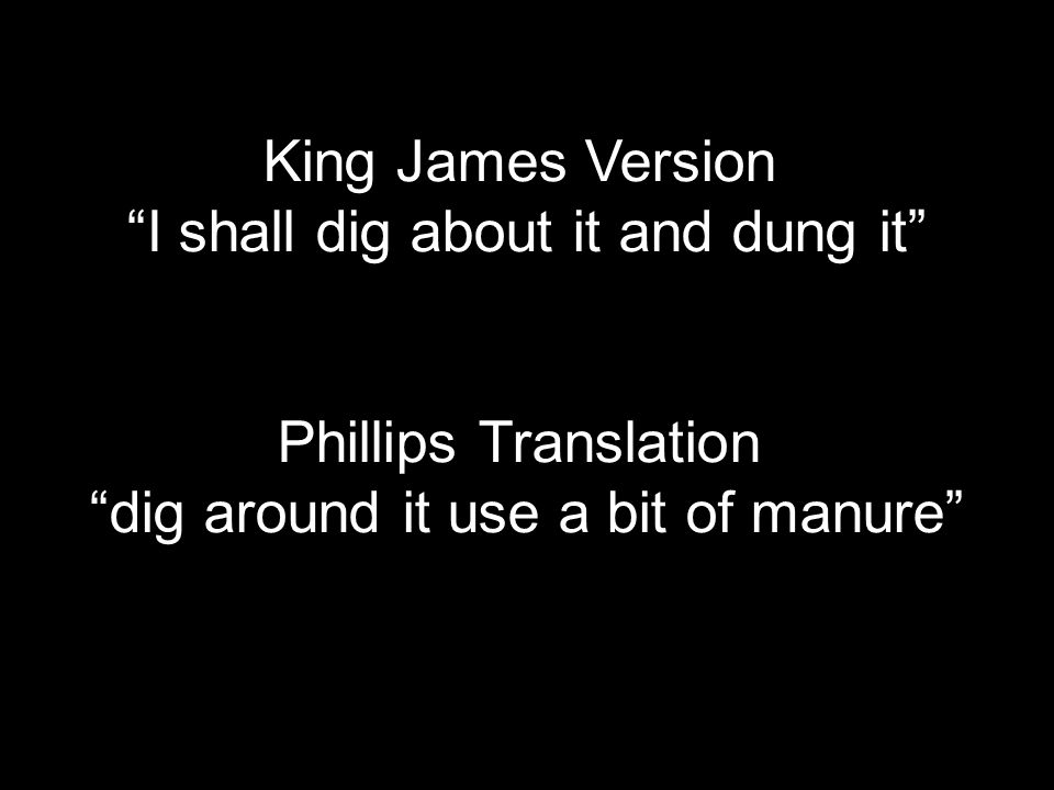 King James Version I shall dig about it and dung it Phillips Translation dig around it use a bit of manure