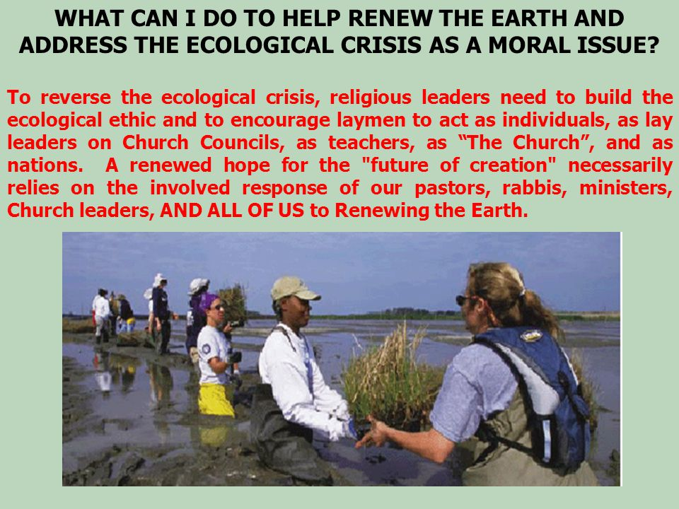 WHAT CAN I DO TO HELP RENEW THE EARTH AND ADDRESS THE ECOLOGICAL CRISIS AS A MORAL ISSUE? To reverse the ecological crisis, religious leaders need to