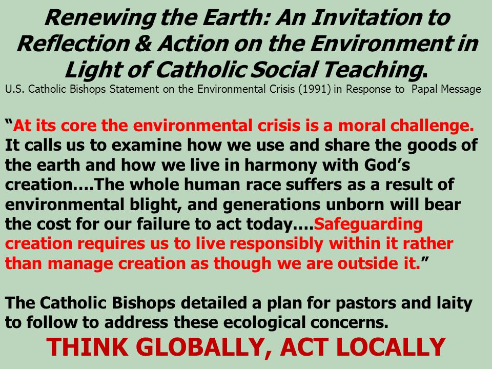 Renewing the Earth: An Invitation to Reflection & Action on the Environment in Light of Catholic Social Teaching.