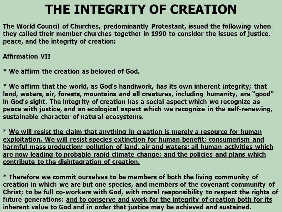 THE INTEGRITY OF CREATION The World Council of Churches, predominantly Protestant, issued the following when they called their member churches togethe