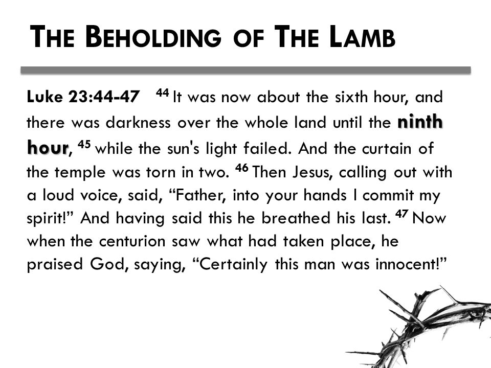 T HE B EHOLDING OF T HE L AMB ninth hour Luke 23:44-47 44 It was now about the sixth hour, and there was darkness over the whole land until the ninth hour, 45 while the sun s light failed.