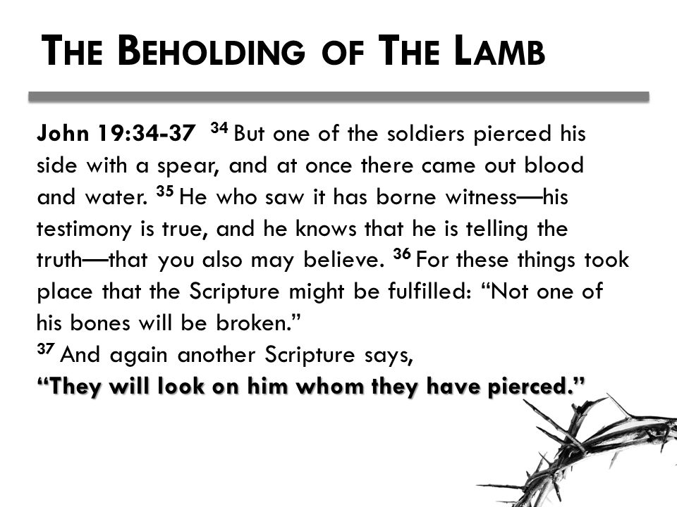 T HE B EHOLDING OF T HE L AMB John 19:34-37 34 But one of the soldiers pierced his side with a spear, and at once there came out blood and water.