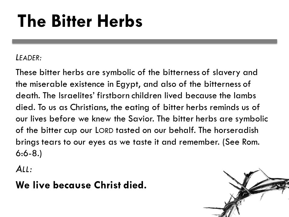 The Bitter Herbs L EADER : These bitter herbs are symbolic of the bitterness of slavery and the miserable existence in Egypt, and also of the bitterness of death.