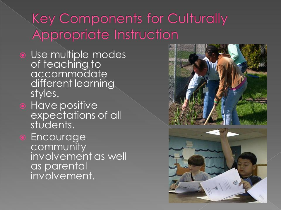  Use multiple modes of teaching to accommodate different learning styles.